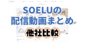 SOELUソエルの配信動画ビデオレッスン他社比較